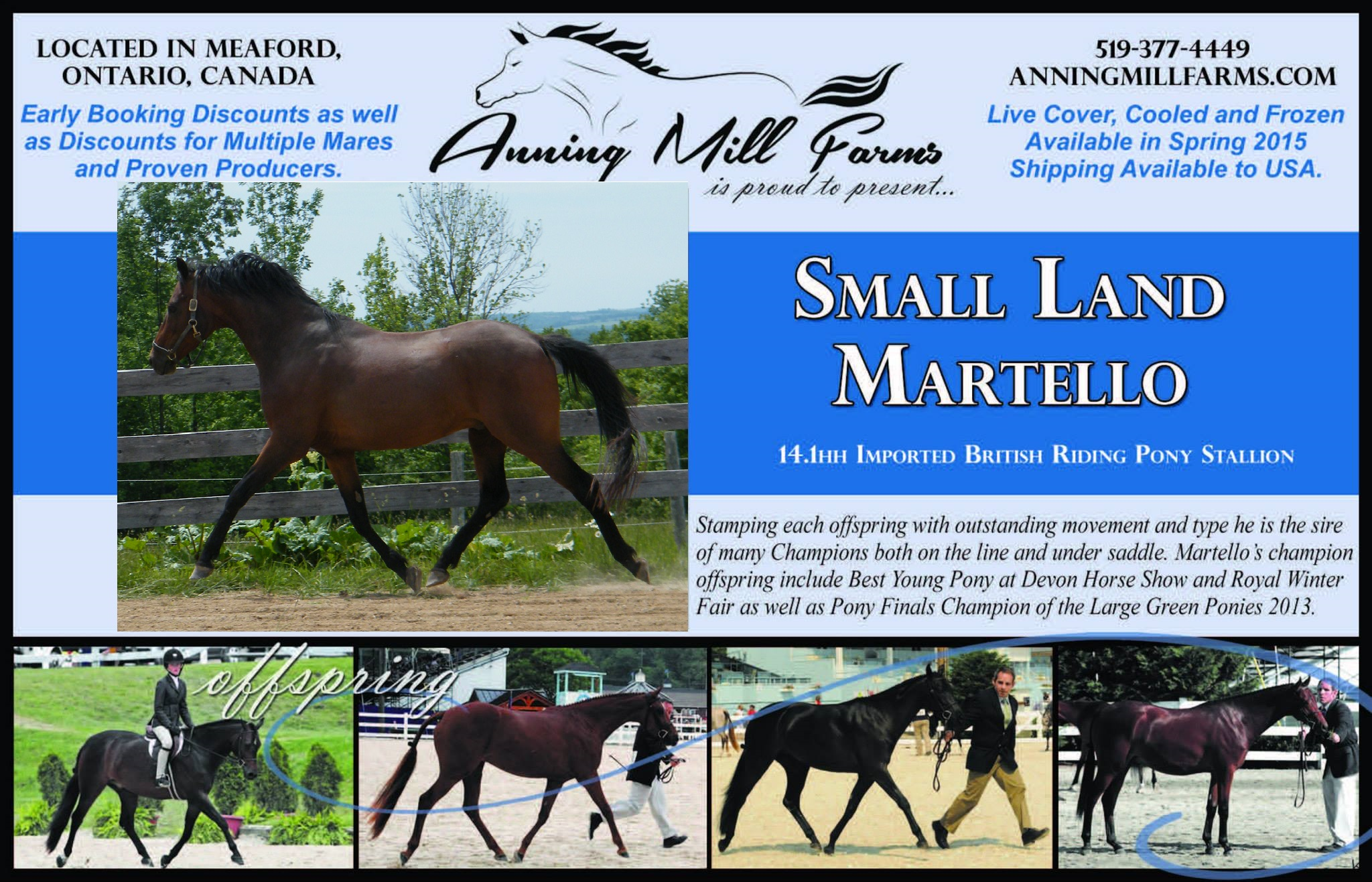 Small land martello 2015