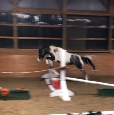 Ace jump